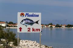 Stock Photo of peljesac peninsular, drace village, dalmatian coast, croatia