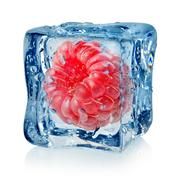 Berry raspberry in ice cube Stock Photos
