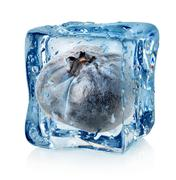Blueberry in ice cube Stock Photos