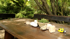 Nature table Stock Footage