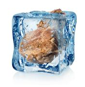 Stock Photo of Roasted meat in ice cube
