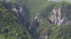 Mountain cliffs with conifer forest Stock Footage