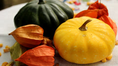 Happy thanksgiving with pumpkins Halloween Stock Footage