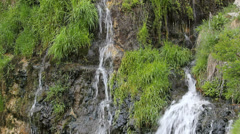 Beautiful spring scenery, little waterfall pour fresh green grass wall Stock Footage