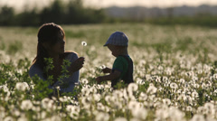 Baby and mother play in dandelion field at twilight Stock Footage