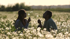 Young parents play in dandelion flourish field, baby come to parents at sunset - stock footage