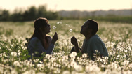 Stock Video Footage of Young parents play in dandelion flourish field, baby come to parents at sunset