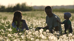 Lovely young family blow dandelion flower in flourish field at sunset Stock Footage