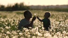 Funny moments, father and son blow a dandelion at sunset in flourish field - stock footage