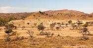Stock Photo of flinders ranges landscape. south australia.