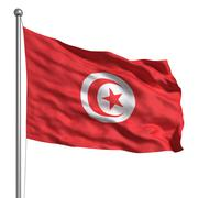 flag of tunisia - stock illustration