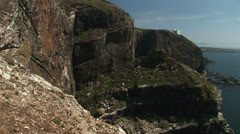 Stock Video Footage of Sea birds on cliffs