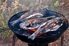 Sea bream fish grilling on bbq Stock Photos