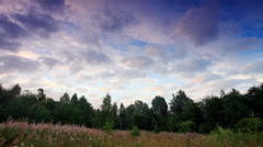 Clouds behind the trees in the forest. Moiseevichi,  Stock Footage