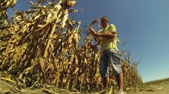 Farmer Checking his Cornfield Stock Footage