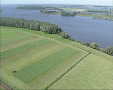 Aerial shot Biesbosch national park in the Netherlands Stock Footage