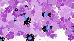 Purple clover & black daisy. Stock Footage