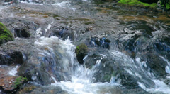 The river runs over boulders in the primeval forest - zoomed - stock footage