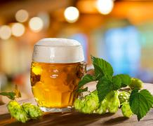 hops and beer glass - stock photo