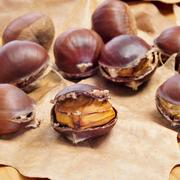 roasted chestnuts, typical snack in all saints day in catalonia, spain - stock photo