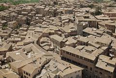 roofs of siena, italy - stock photo