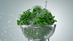 Washing lettuce, Slow Motion Stock Footage