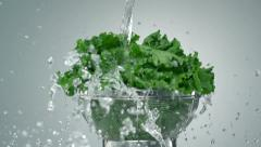 Washing lettuce, Slow Motion - stock footage