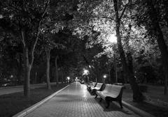 Night Park black white Stock Photos