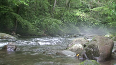 Misty River - stock footage