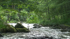 Stream - stock footage