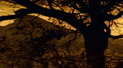 Stock Video Footage of Panning shot of Southwestern mountain brush