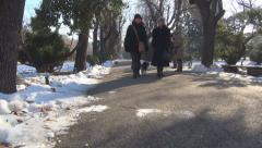 Mother, Daughter Walking Dogs in Park, Talking Women Friends, People in Winter - stock footage