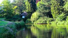 Garden pond HD Stock Footage
