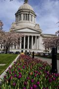 Legislative capitol building with tulip patch in front Stock Photos