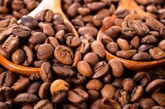Coffee crop Stock Photos