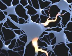 Neurones - stock illustration