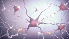 Neurones Stock Illustration
