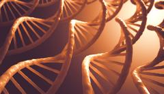 DNA Sequence Stock Illustration