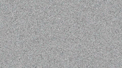 B&W TV Static with White Noise Audio Stock Footage
