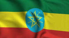 Ethiopia Weave Textured Flag Loop Stock Footage