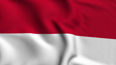 Indonesia Weave Textured Flag Loop Stock Footage