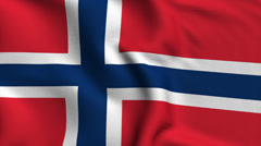 Norway Weave Textured Flag Loop - stock footage