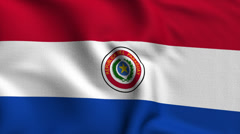Paraguay Weave Textured Flag Loop Stock Footage