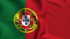 Portugal Weave Textured Flag Loop - stock footage