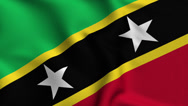 Stock Video Footage of Saint Kitts and Nevis Weave Textured Flag Loop