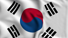 South Korea Weave Textured Flag Loop - stock footage