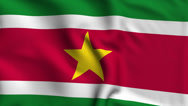 Stock Video Footage of Suriname Weave Textured Flag Loop
