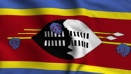 Stock Video Footage of Swaziland Weave Textured Flag Loop