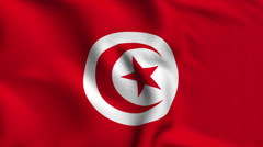 Tunisia Weave Textured Flag Loop - stock footage