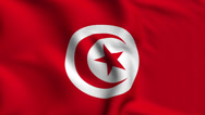 Stock Video Footage of Tunisia Weave Textured Flag Loop
